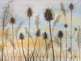 """Winter Teasels"" Acrylic on box canvas Framed £130 To be exhibited at Stotfold Mill 29th June-1st July"