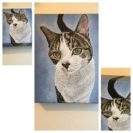 Acrylic on deep edged box canvas