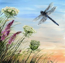 """Dragonfly on the Breeze"" Original £36.99 unframed or £59.95 Framed. Prints available."
