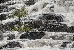 Glen Strathfarrar Waterfalls (1)