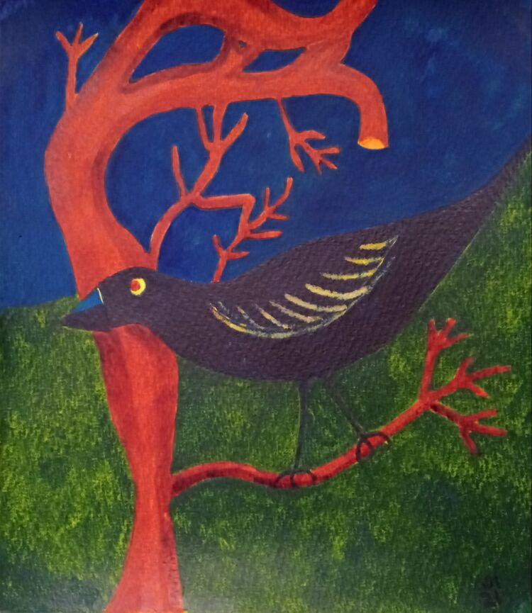 Black Bird 21.