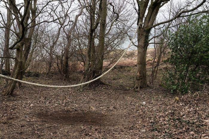 Rope Woods 2 desat