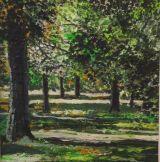 Inverleith Gardens - summer 2013