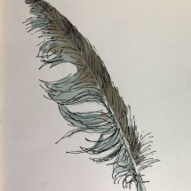 Feather 1