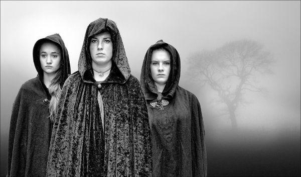 Pilgrims Three
