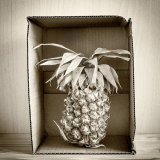 Boxed Pineapple