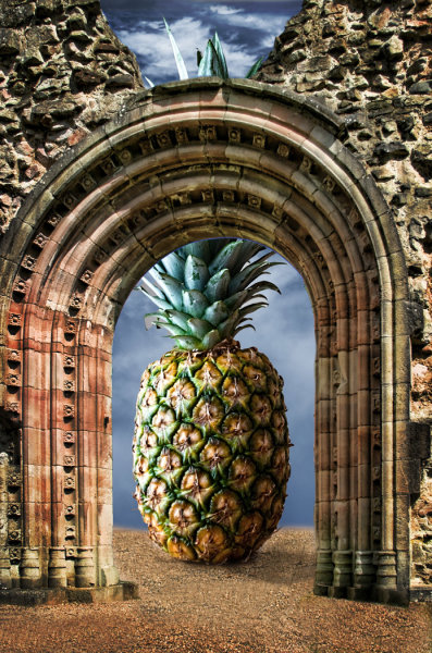 Pineapple Arch