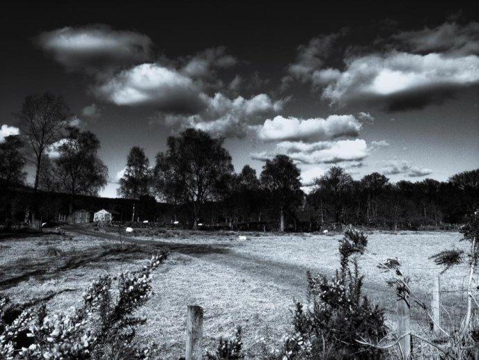 Light on field, Callander
