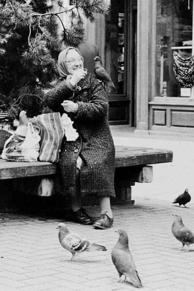 Pigeon Lady, Buchanan Street, Glasgow