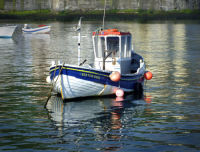 SEATON ROSE IN STAITHES HARBOUR