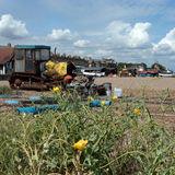 Aldeburgh Beach 3