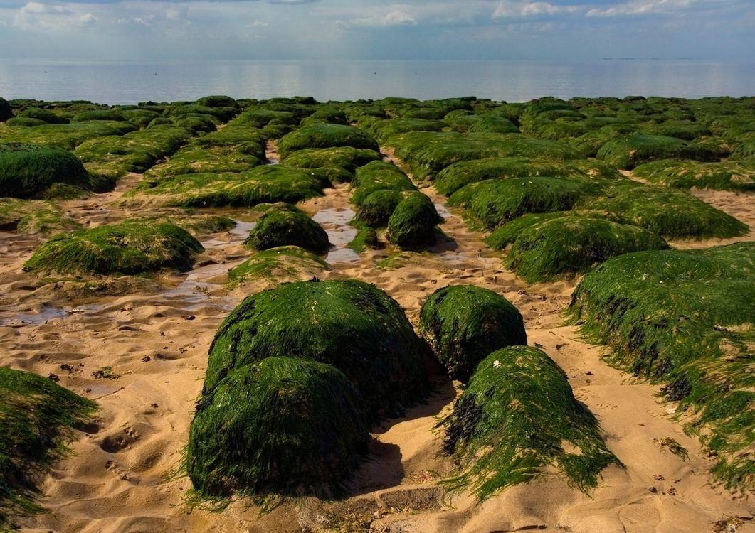 Cobbles on Hunstanton Beach