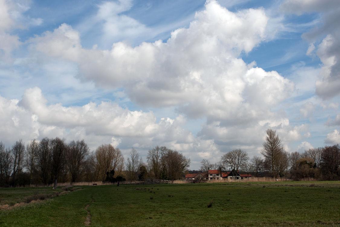 Suffolk Countryside 3
