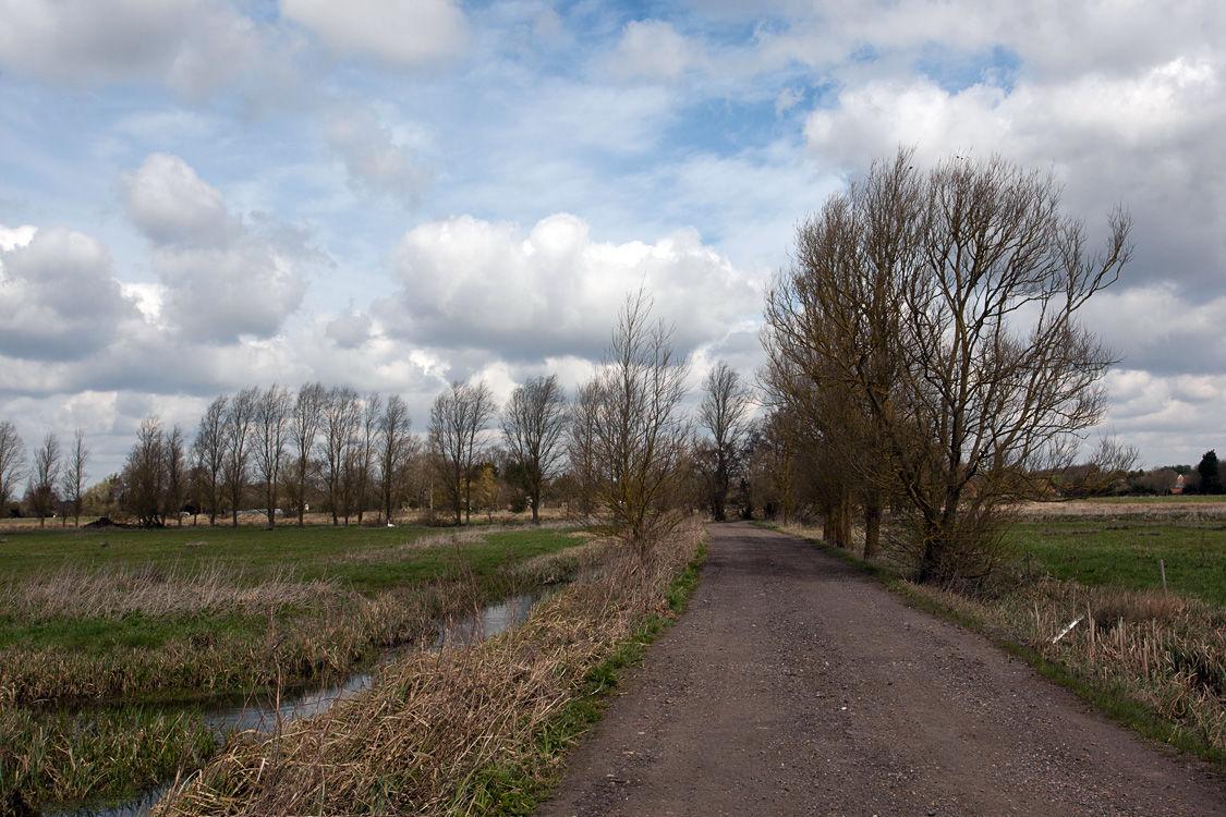 Suffolk Countryside 4