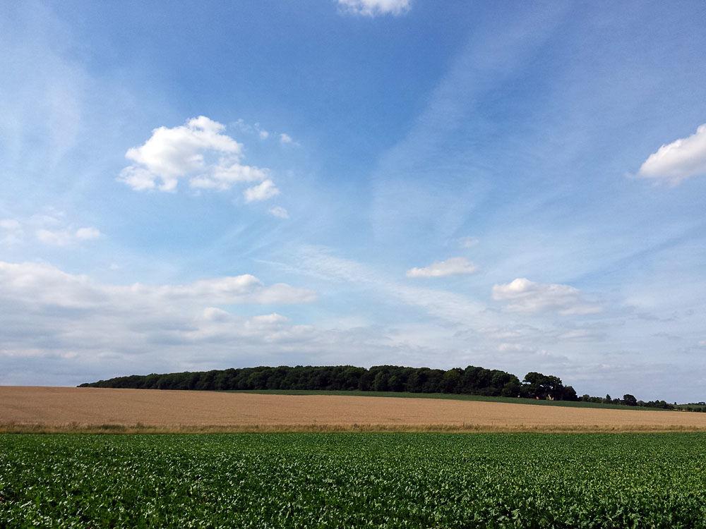Suffolk Countryside 6