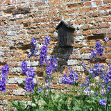 Walled Garden at Felbrigg Hall 9