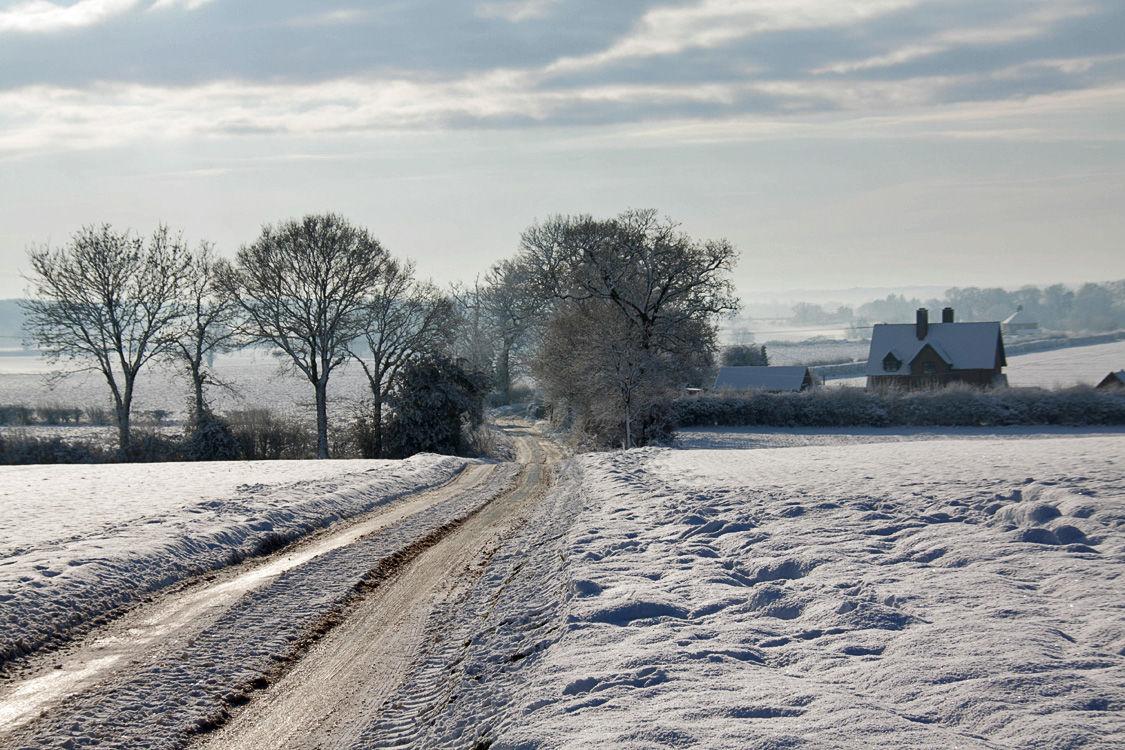 Winter  Scene 6