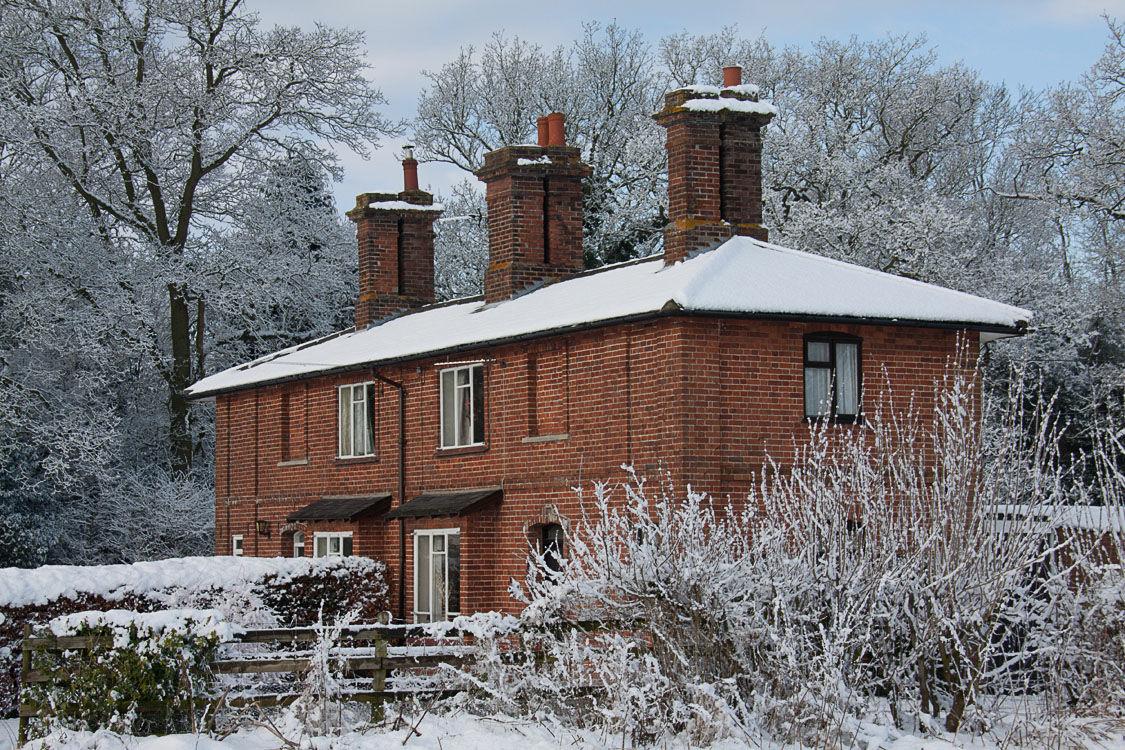 Winter  Scene 7