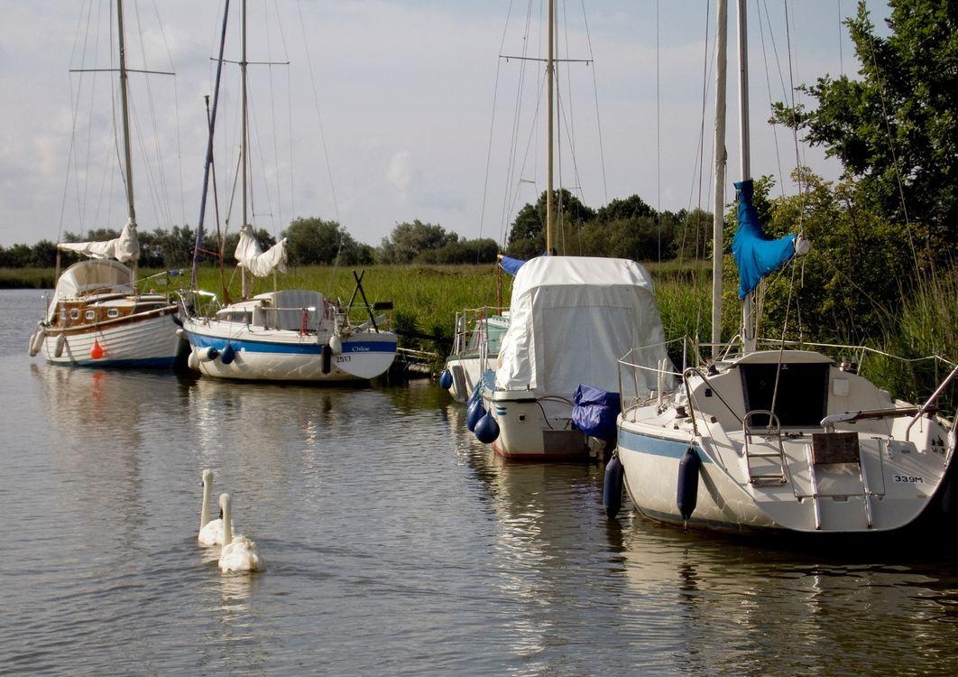 Yachts moored at Horsey