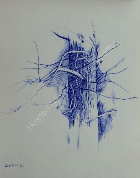 Tree Trunk 22cm x 18cm