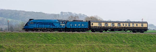 DSC 8019