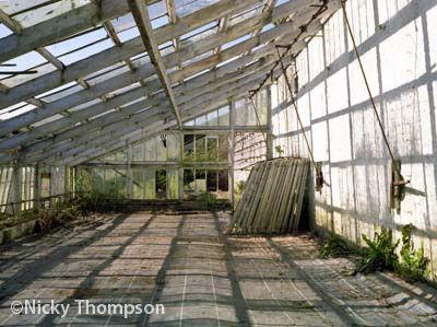 glasshouse II