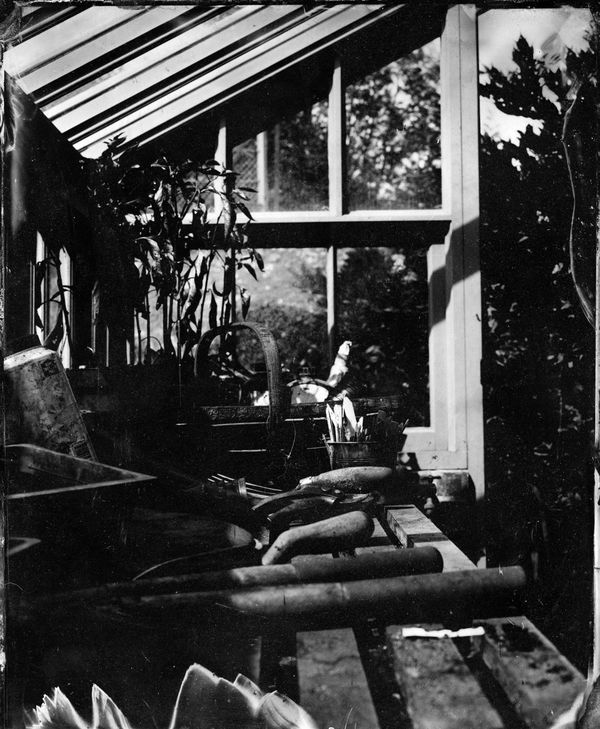 inside Richard's greenhouse