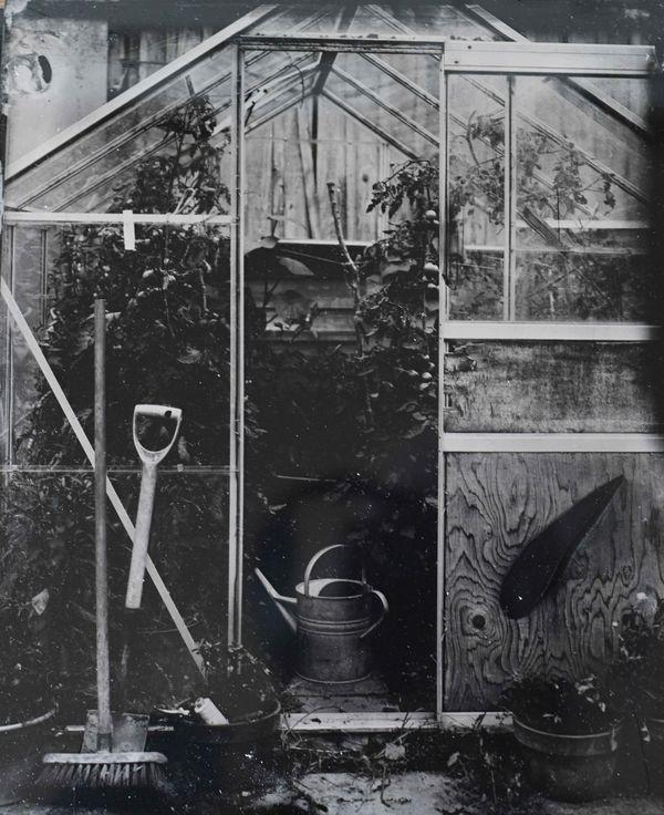 Jane's Greenhouse