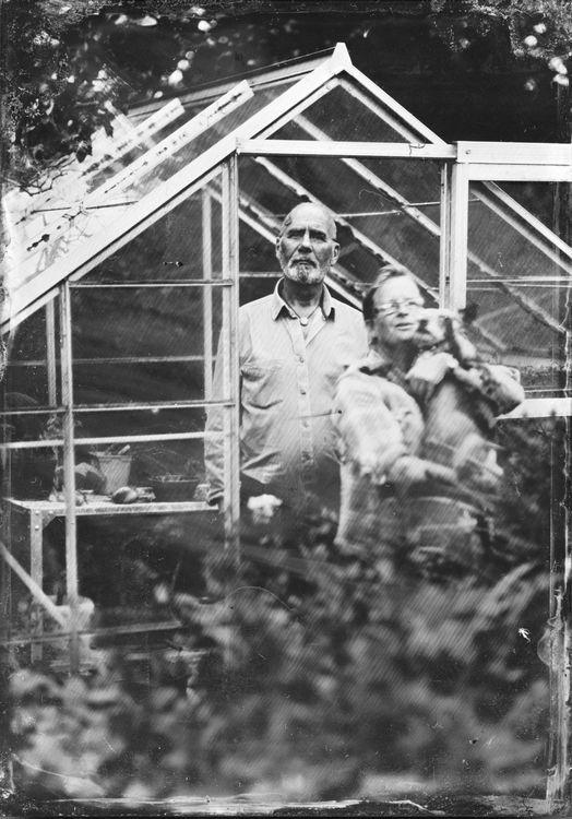 Krissy's Greenhouse