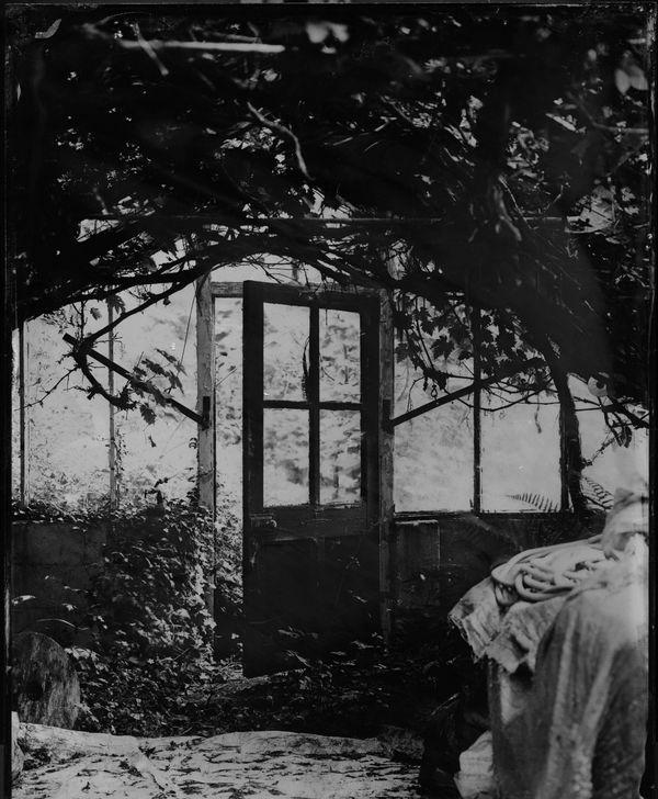 Door in Lesley's greenhouse