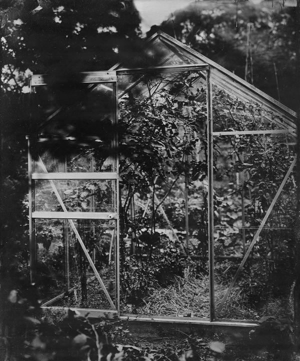 Marieke's greenhouse