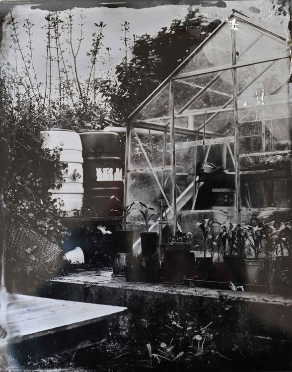 Spin and Digger's greenhouse