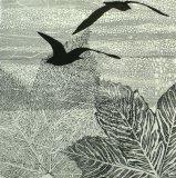 Gulls & Leaves