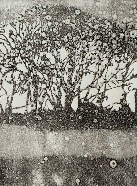Trees Rain