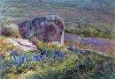 Hilltop Spring
