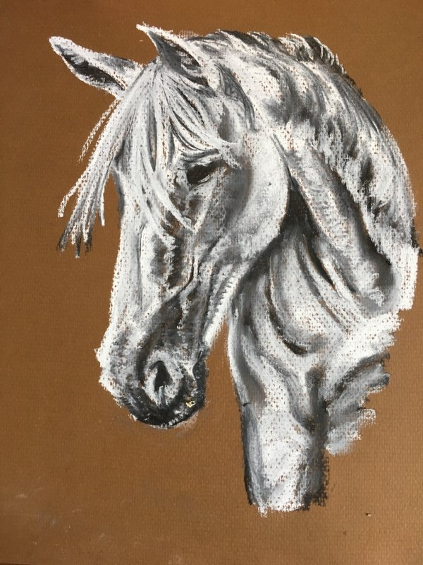 White horse in chalk pastel