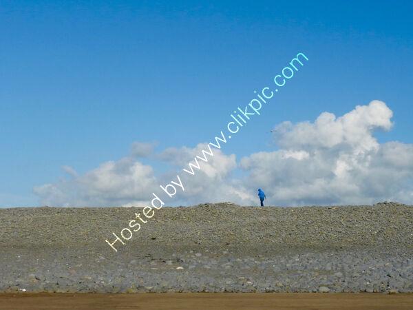 pebble walker