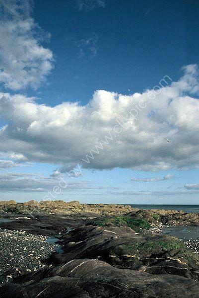 cornish shore