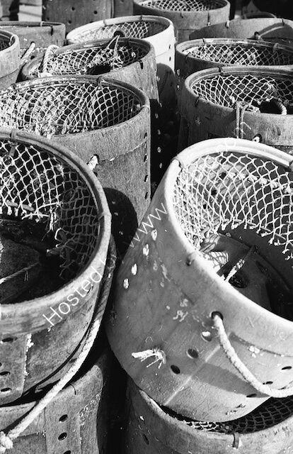 Paignton pots