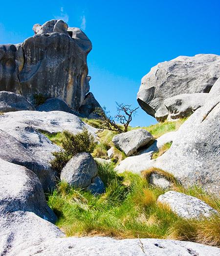 Castle Rocks, New Zealand