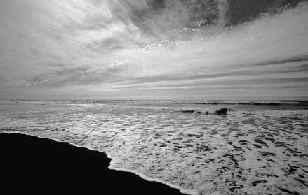 Gold beach California