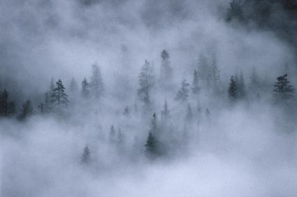 Mist in Yosemite