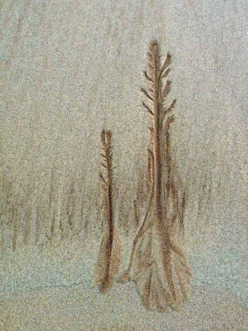 Sand pattern Balmakeil