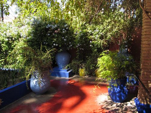 Majorelle Garden 2 (Clikpic 800)