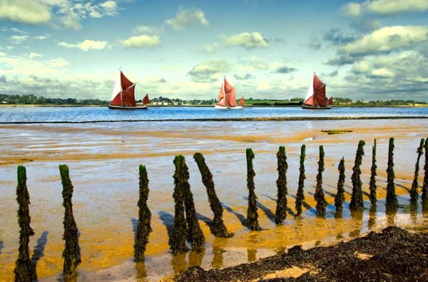 Barge Race on the River Orwell