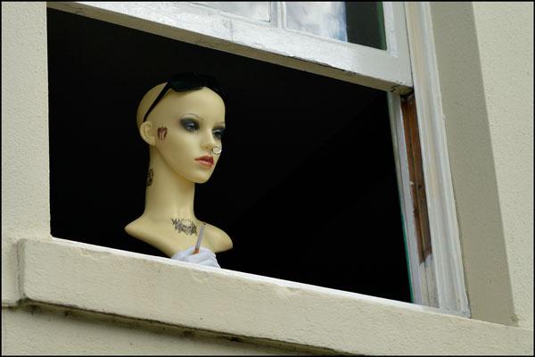 The Onlooker