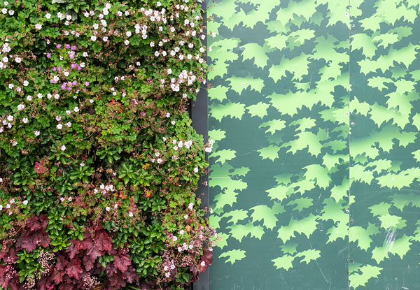 Hedge and Hoarding