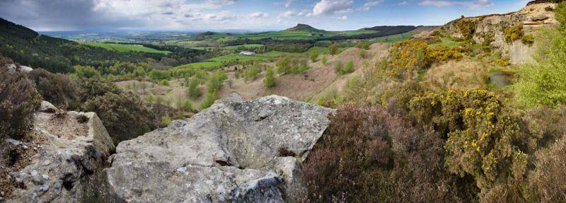 Gribdale panorama