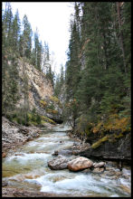 Johnston's Canyon