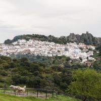 "One of many ""Pueblos Blancos"" south of Seville"